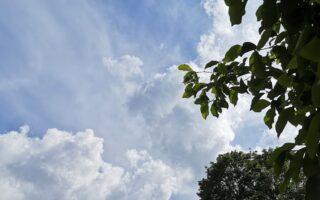 banner grijze wolken
